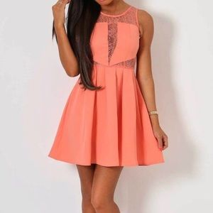 Bebe Coral Reef Lace Detail Skater Frill Dress